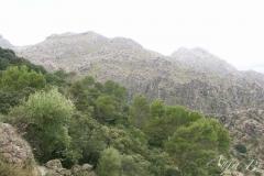 MallorcaI27