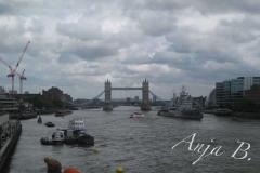 England79