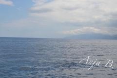 Sardinien15